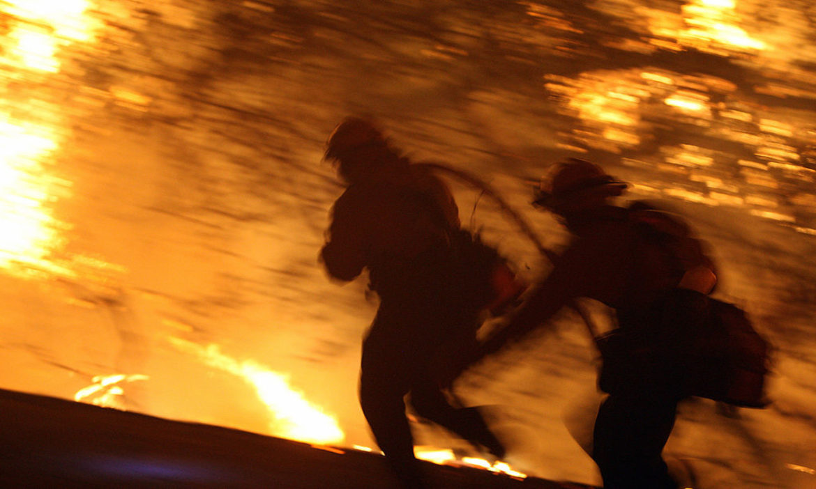 -california-firefighters-battling-wildfire-chased-rampaging-longhorn-bull