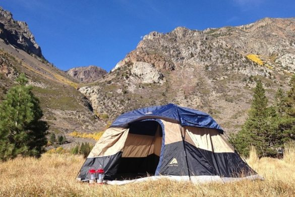 camping-tent-hilariously-takes-flight-after-not-being-secured-correctly