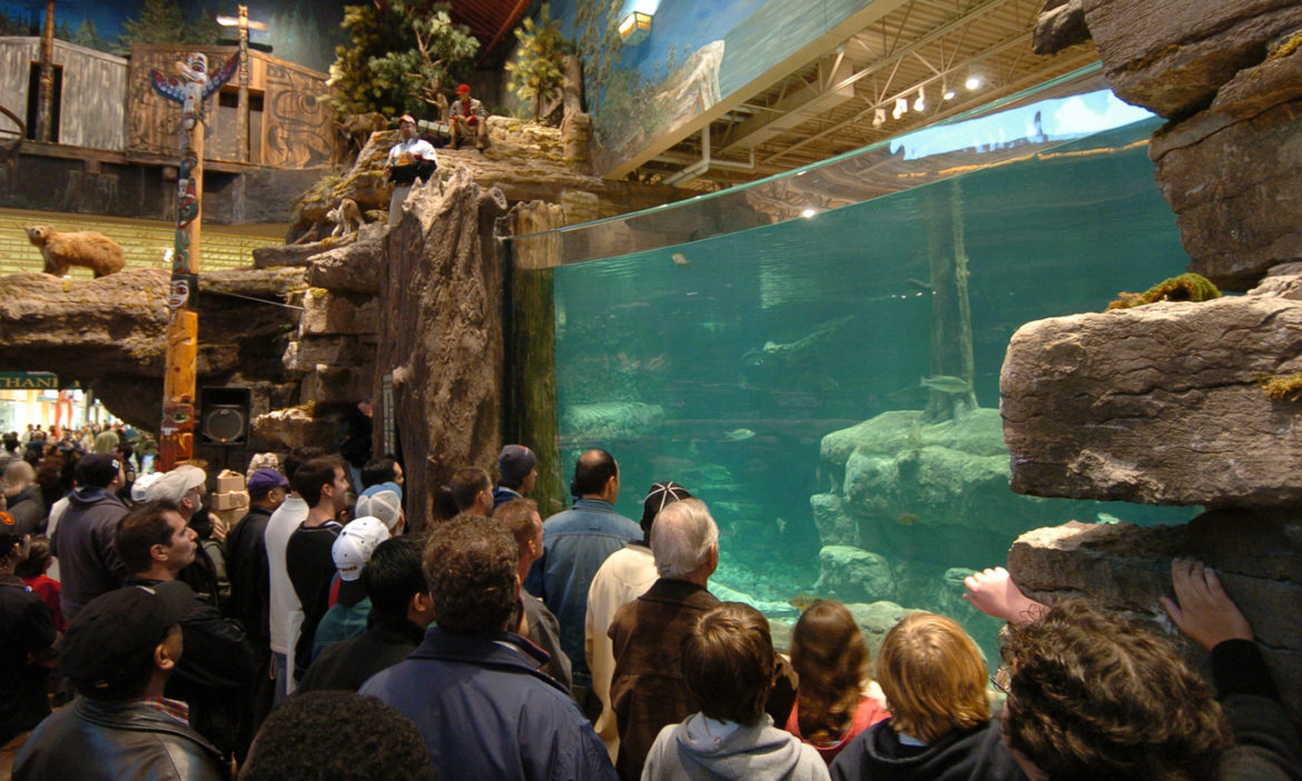 bass-pro-shop-another-fish-tank-swimmer-man-cannonballed-into-water