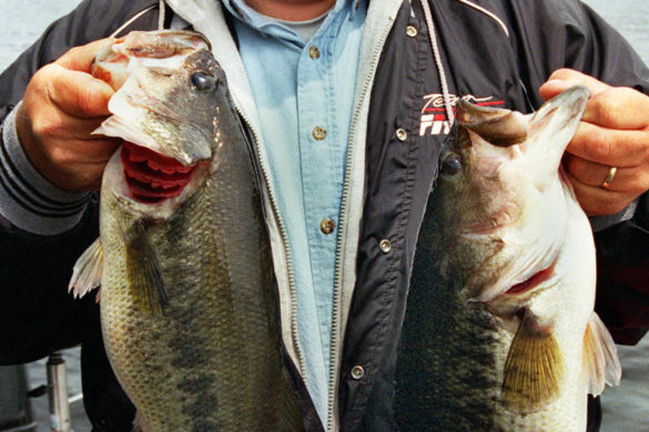 swamp-people-troy-broussard-shows-off-latest-catch-with-new-fishing-lures-they-dont-let-go