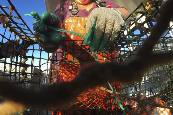 trailblazing-101-year-old-outsider-will-remain-a-working-lobsterwoman-until-i-die