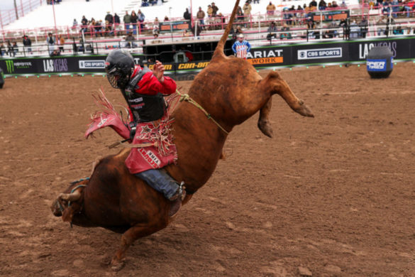 watch-this-cowboy-received-last-minute-invite-pbr-absolutely-put-show