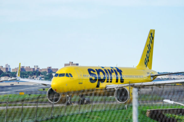 spirit-airlines-nearly-crashes-all-thanks-stray-bird-engine